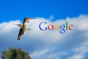 What are Google Algorithms? | The Overview