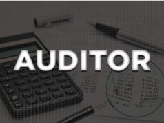 What is an Auditor   Auditor Types