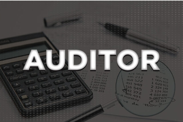 What is an Auditor | Auditor Types